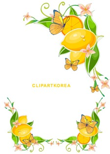 Flowers, fruit and butterfly lace Vector material (6)