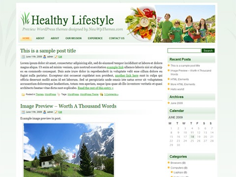 Free WordPress Theme – Healthy Lifestyle Preview