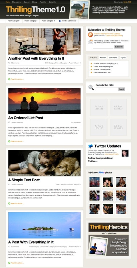 Free WordPress Theme - ThrillingTheme Preview