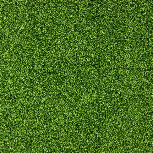 Beautiful Green Grass Texture Preview