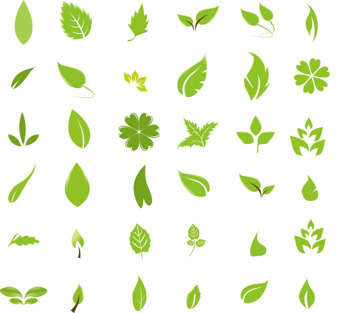 Pin Green Leaf Logo Design on Pinterest