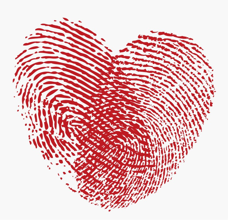Fingerprint Heart Vector Graphic  Free Vector Graphics  All Free Web