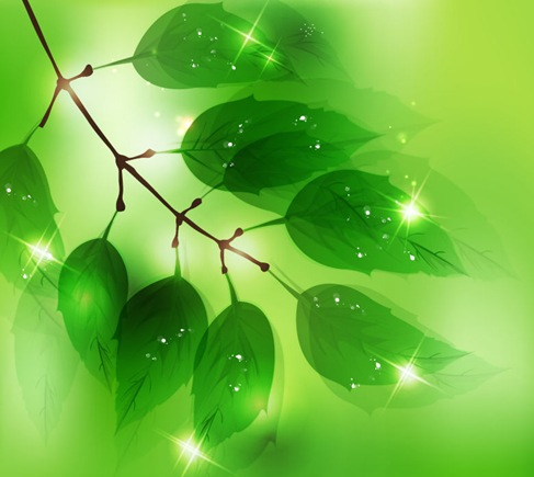Abstract Natural Design Vector Illustration