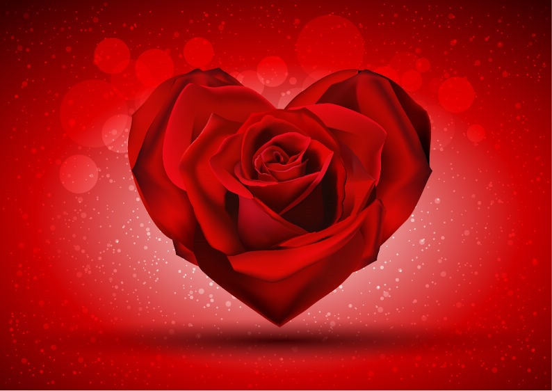 Name red rose in the shape of heart over bright background vector