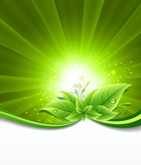 Green Leaves on Burst Background Vector Illustration