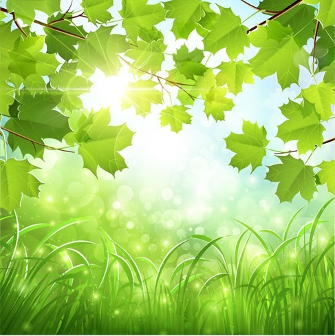 Green Natural Background Vector Illustration