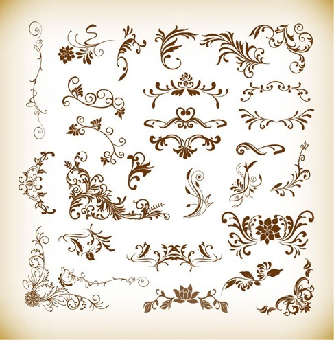 Floral Elements Collection Vector Illustration