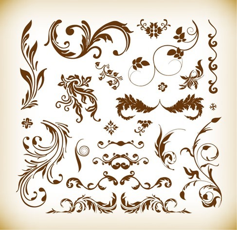 Various Floral Elements Vector Illustration Set