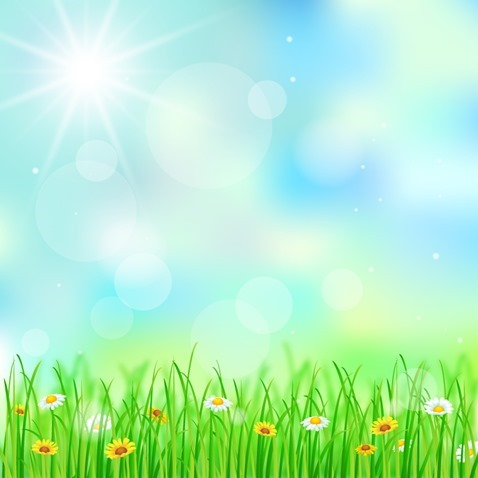 Spring-Background-Vector-Illustration