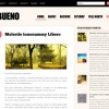 Free WordPress Theme &#8211; Bueno