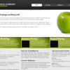 Free CSS Web Template – Corporate 2