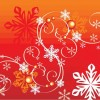 Winter Snowflake Vector