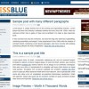 Free WordPress Theme – Press Blue