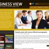 Free WordPress Theme – Business View