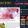 Free WordPress Theme – Defne