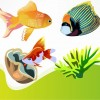Free Vector Fish