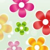 Colorful Flower Vector Graphic