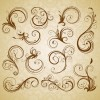 Set of Swirl Floral Vintage Vector Design Elements