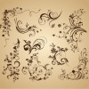 Set of Floral Vintage Vector Design Decoration Elements