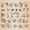 Various Floral Element Vector Collection