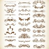 Vector Set of Vintage Floral Frame Element for Design