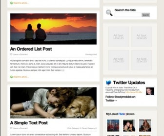Free WordPress Theme - ThrillingTheme