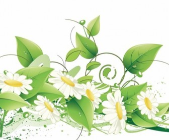 Elegant Floral Vector Background