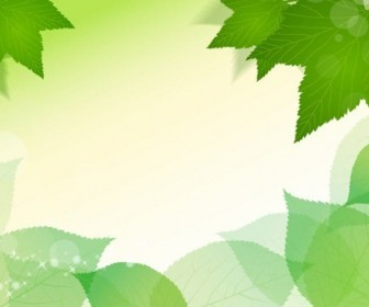 Spring Fresh Green Leaves Vector Illustration