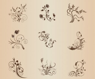 Set of Floral Elements for Design Vector Illustration