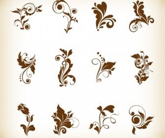 Set of Beautiful Floral Elements Vector Illustration