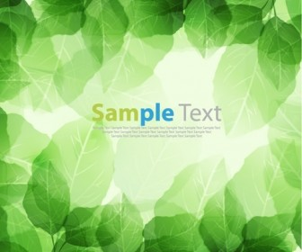Vector Illustration of Green Leaves Background